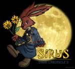 Sirus from Dark Chronicle by rakumel