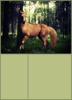 palomino in forest by renderedsublime