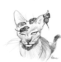 mandatory daily cat sketch 1282 by nosoart