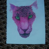 Pink Jaguar by 1nfested