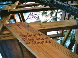 Our Treehouse Built by My Husband {Photo 41} by Empress-XZarrethTKon