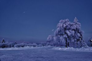 Winter night by ~vendula-koublova