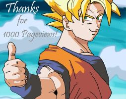 .:1000 Pageviews:. by DBZfan1207
