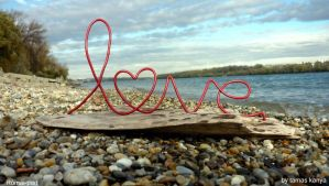 driftwood love in hungary by tamas kanya by tom-tom1969