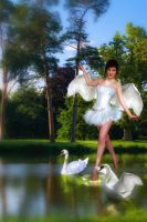 swan by emerito1983