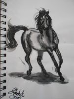 Trotting Horse - 'Paint Pen' + Water by LightheartedLoki