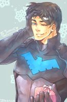 SS Nightwing by jinzilla