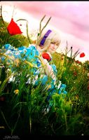 Hetalia - Remember That Summer by aco-rea