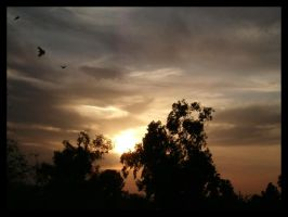 Tucson Sunset 1 by Lews-Therin