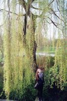 Touch of Willow by DasGhul
