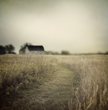 Wandering by intao