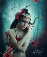 The Red Rose by PriscillaSantana