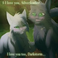 Silverfeather and Darkstorm by RiverSpirit456