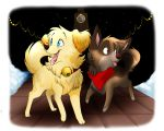 Xmas Dogs by MarticusProductions