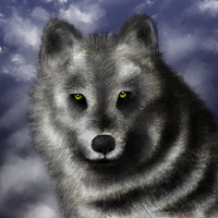 Wolf by EmeSso