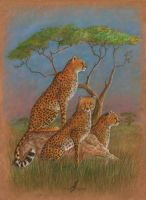 Children of Savanna by AlviaAlcedo
