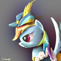 Rainbow Dash Princess Cornation Outfit by Camaine