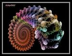 Techno Snail Shell by PsychedelicTreasures