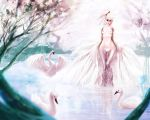 the ugly duckling by malisaa