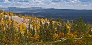 Autumn in Lapland by CarpathianWolf