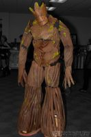 Groot from Guardians of the Galaxy cosplay by MidnightSkyPhoto