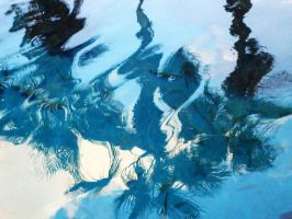 Reflections in Blue by whatategilbertgrape