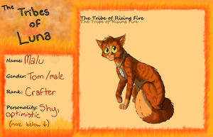 Malu  -The Tribe of Rising Fire-  :App Sheet: by Lyss504813