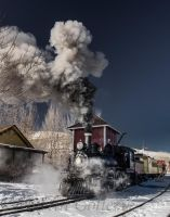 Nevada State Railroad Museum 131215-26 by MartinGollery