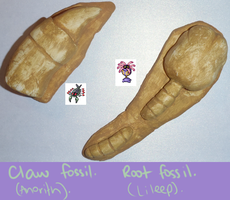 Claw and Root fossils. by SuperSiriusXIII