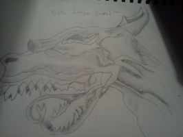 Best Dragon Head I've ever drawn ^__^ by VoraciousAmphy96