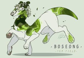 Boseong Tea Field by SinCommonStitches