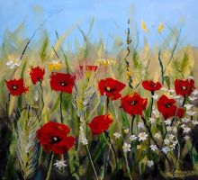Poppies 3 by 007JOKER