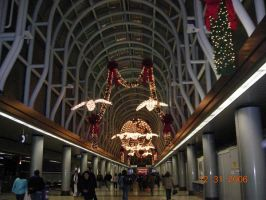 Chicago Airport 4 by Squeener