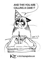Grumpy Cat 05 1st Birthday 2013 by Keymagination