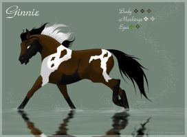 Ginnie - reffrence sheet by Wild-Hearts