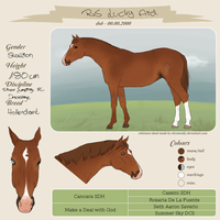 RvS Lucky Aid - Adult Ref by RvS-RiverineStables