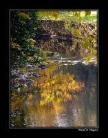 Reflections of Autumn by David-A-Wagner