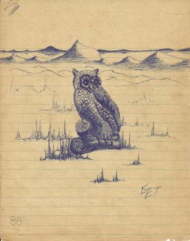 lone owl by csndtb