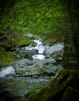 The 100 Steps Waterfall by theaquallama