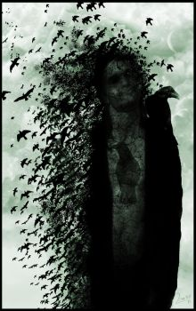 Crows  brings me back by LeandroSanguineo