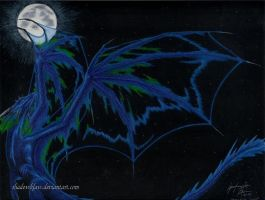 Wings of the Night by shadowklaw