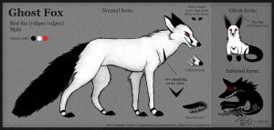 Ghost Fox new reference by VulpesObscurus
