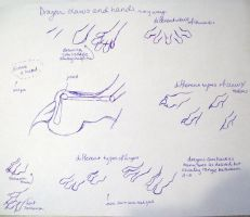 drawing dragon feet by Sasharita