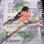 Oriole Bird by JadasArtVision