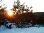 Snowy Sun 3 by Light-Hiruma