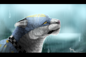 -:Just Another Drop Of Rain:- by SironaWolf