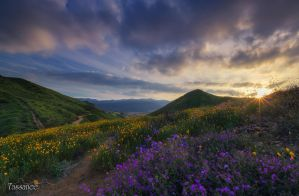 Walker Canyon by tassanee