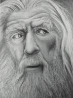 Gandalf Portrait by DarkSpawn81
