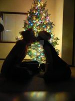 Love by the Tree by HalfTalent082690