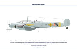 Bf 110 Romania 1 by WS-Clave
